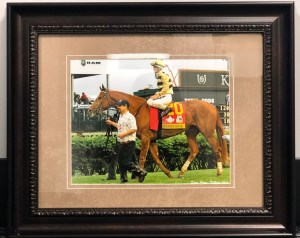 2019 Kentucky Derby winner Country House by Suzie Picou-Oldham