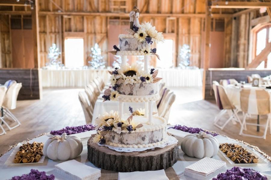 ann arbor wedding photographer barn - ld --027