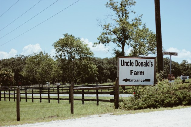 Uncle Donald's Farm Fourth of July Animal Parade 2017