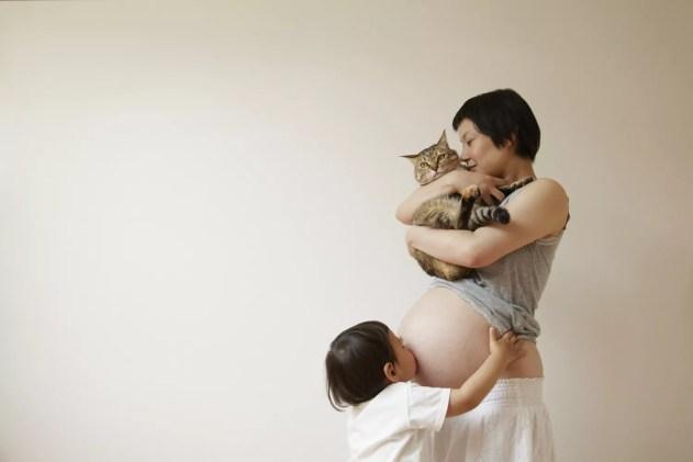 Um, mulher grávida, com, um, gato