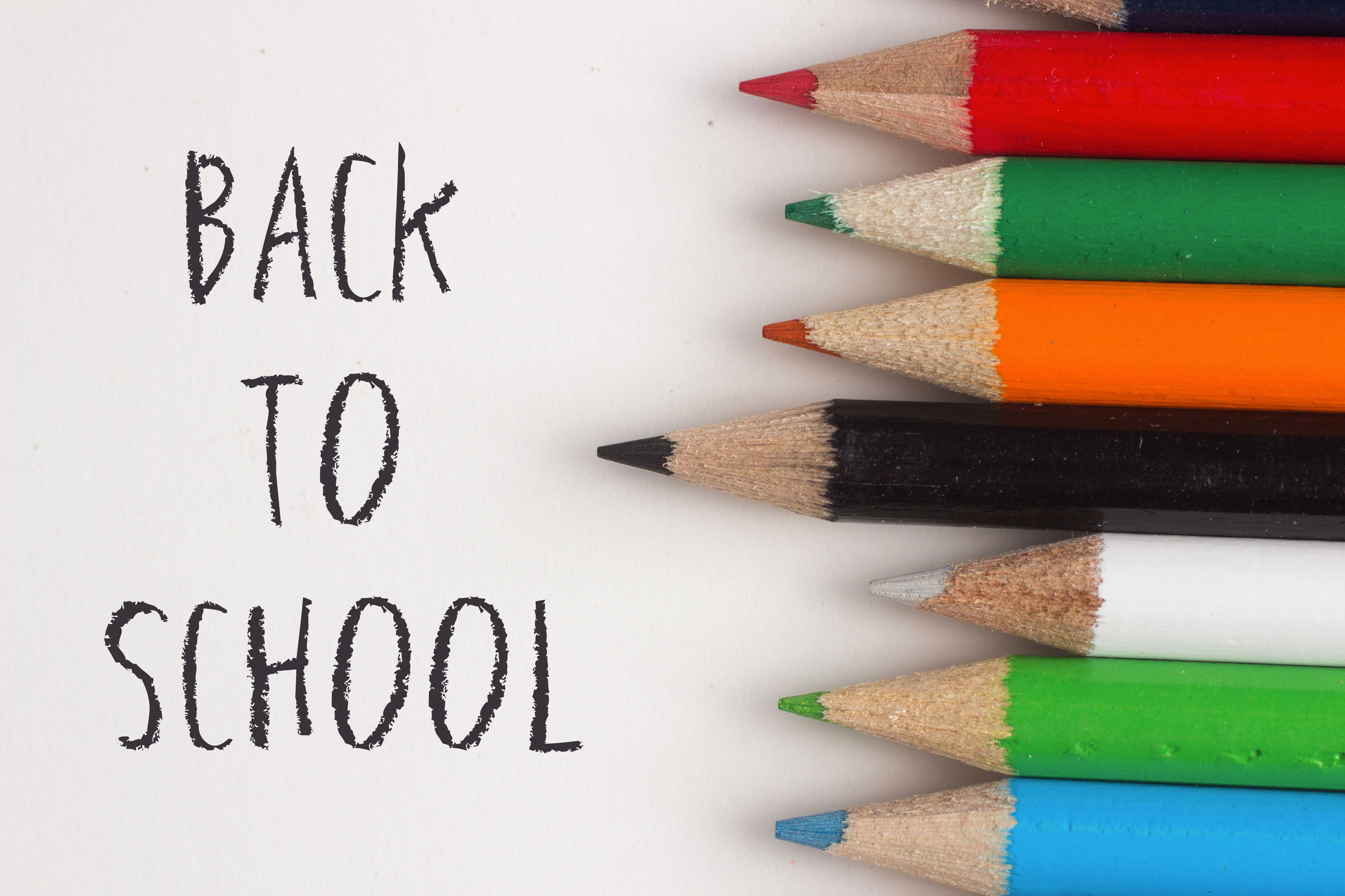 Back To School Word Search And Coloring Pages