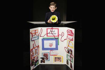 10th Grade Science Fair Project Ideas