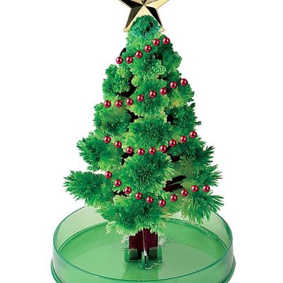 how to keep your christmas tree from drying out - How To Keep Christmas Tree From Drying Out