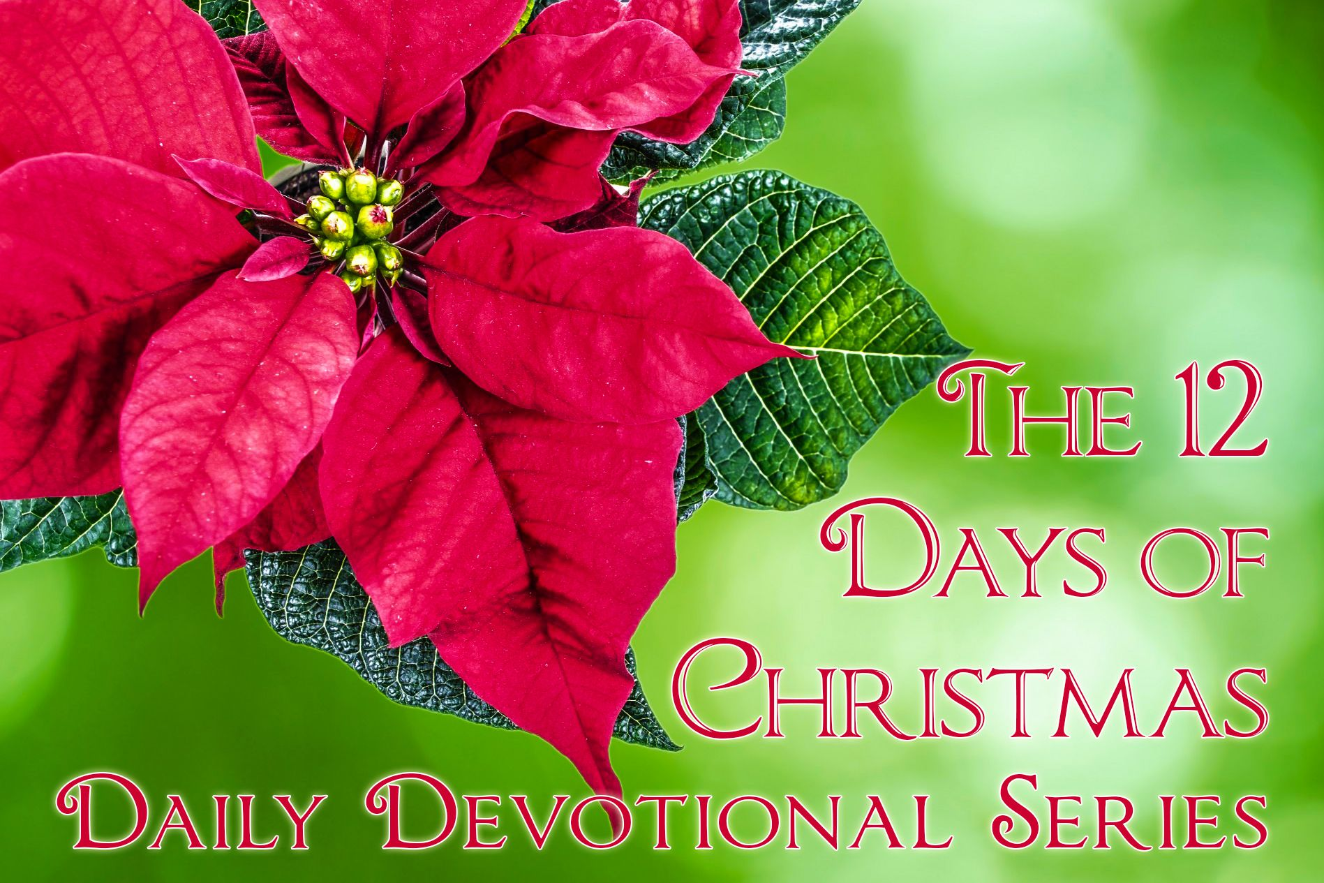 12 Days Of Christmas Devotionals To Inspire You