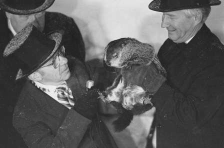 Groundhog Day Inspectors with Groundhog