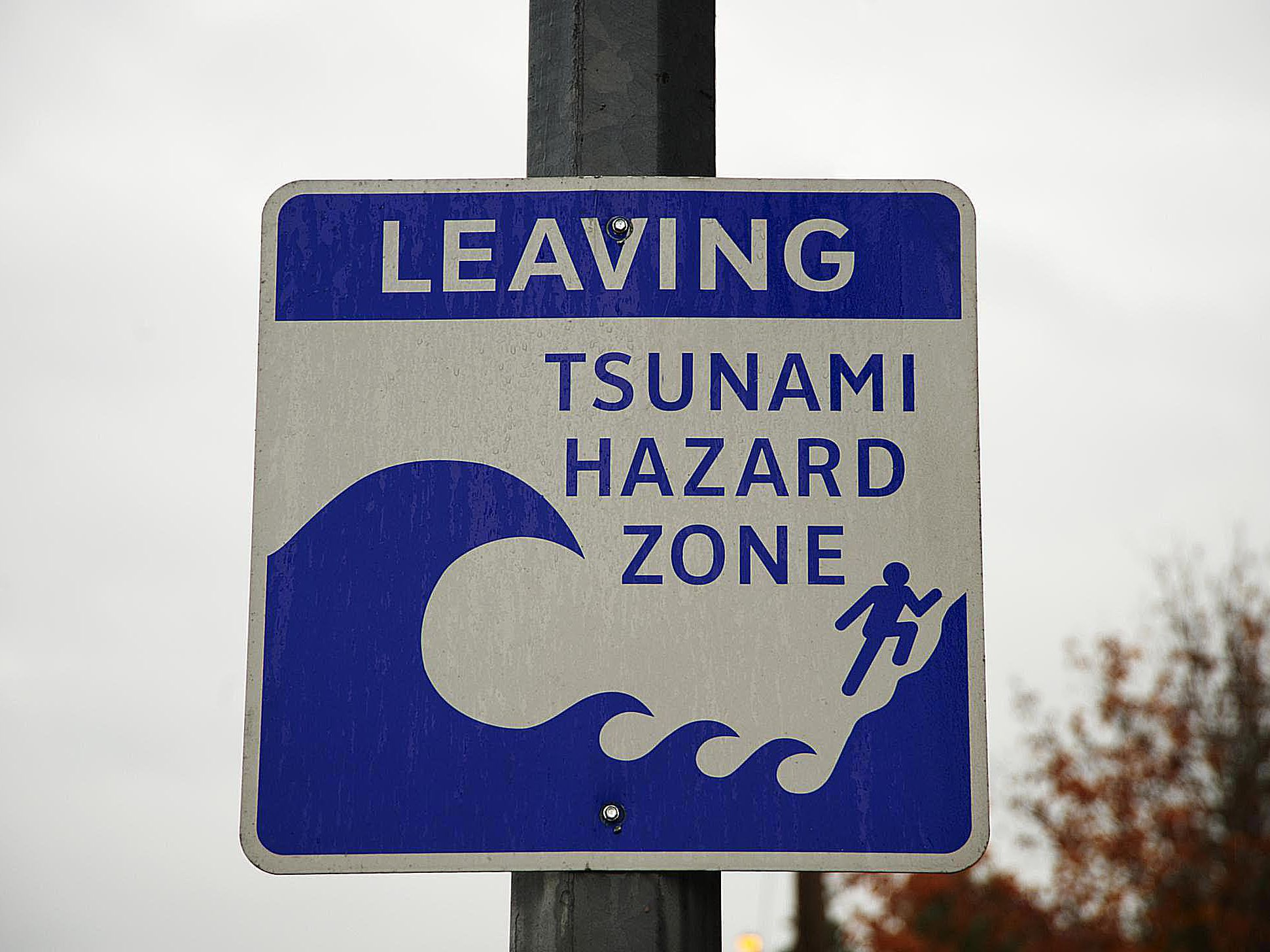 Cipir6 Tsunami Wikipedia Indonesia
