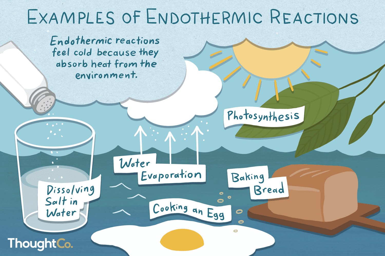 Endothermic Reaction Examples