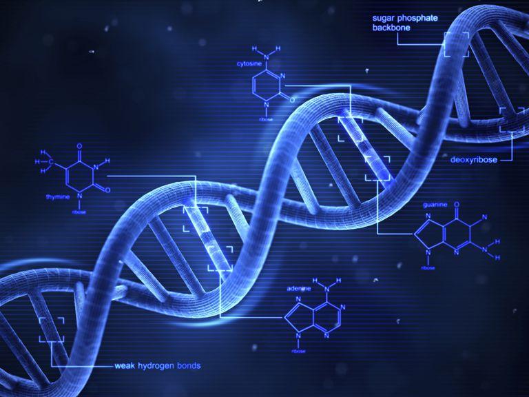 materi genetik DNA