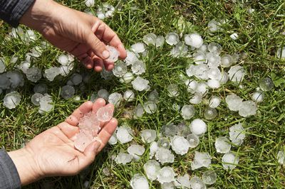 Graupel: a Mix of Snow and Hail