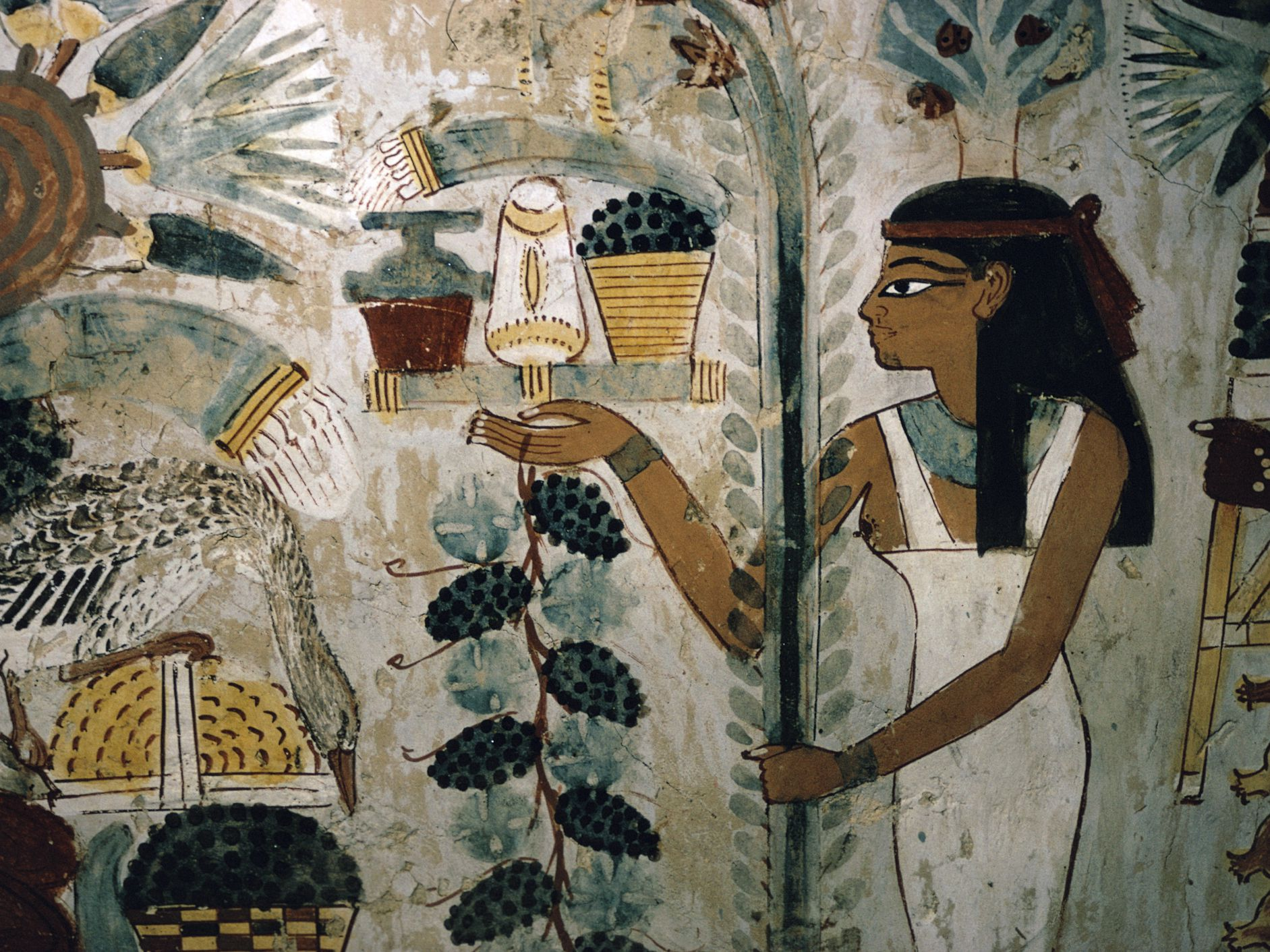 What Did Farmers And Slaves Do In Ancient Egypt