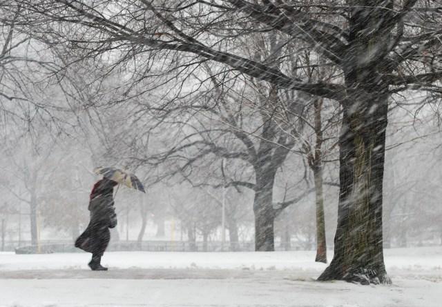 Snowstorm on Boston Common