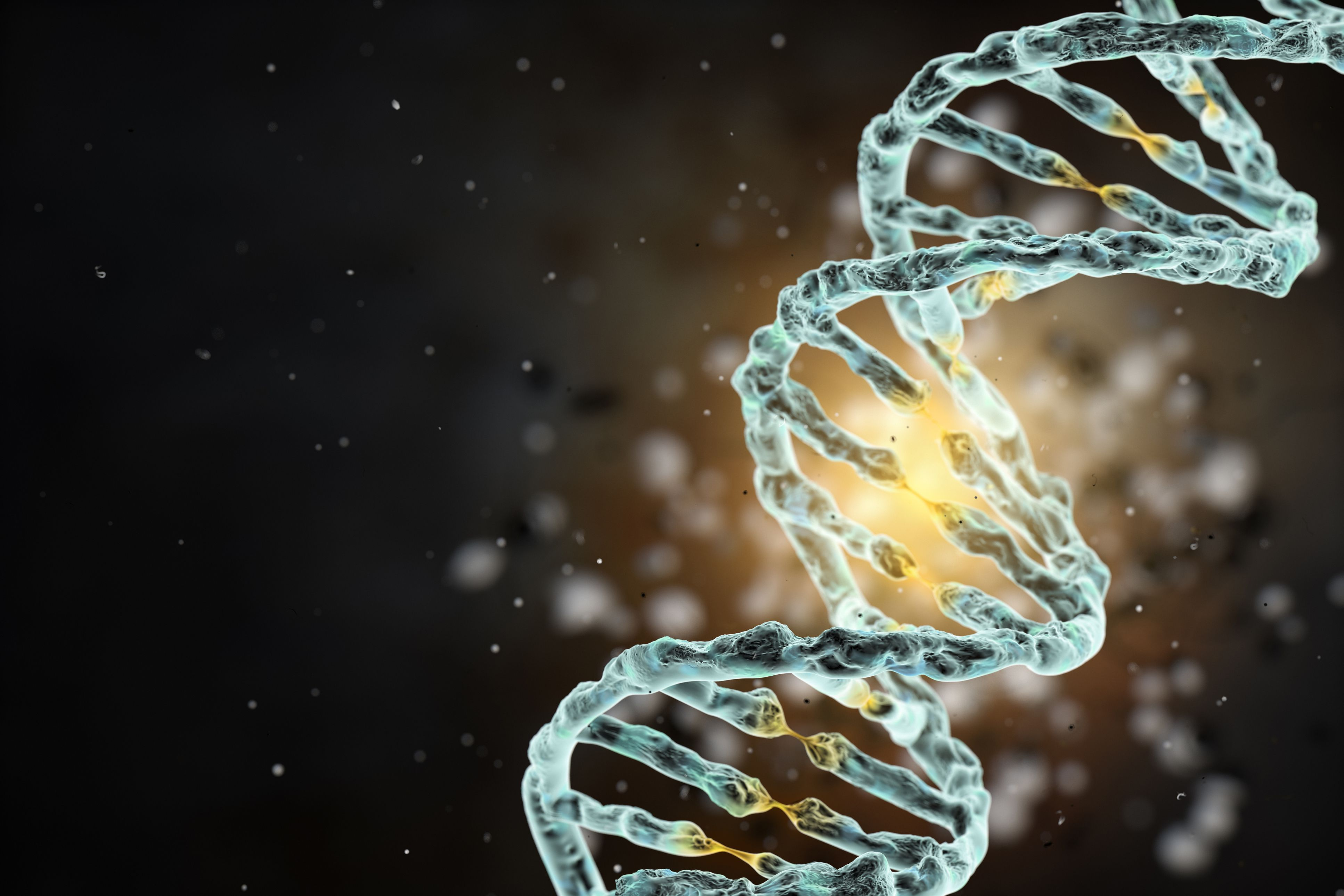 Dna Definition And Structure