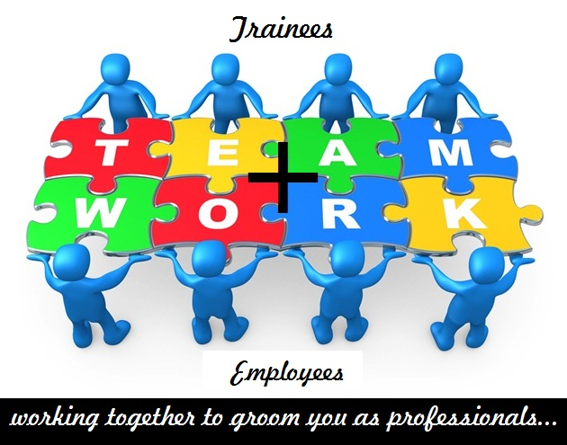 Professional Summer training in IT Company