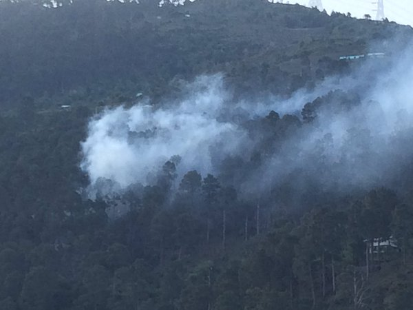 Forest on Fires Sarmoli