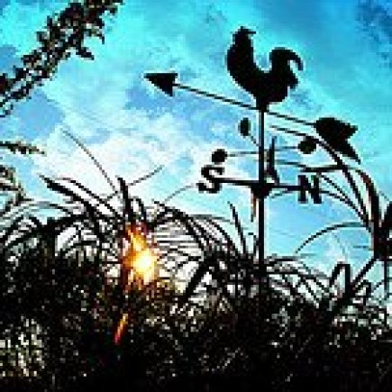 Rooster Weathervane at Sunrise