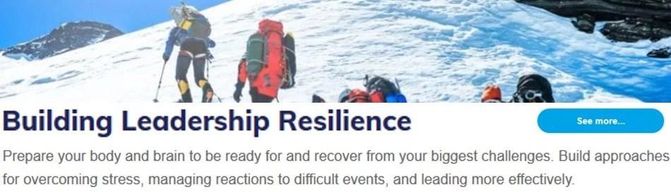 Building Leadership Resilience