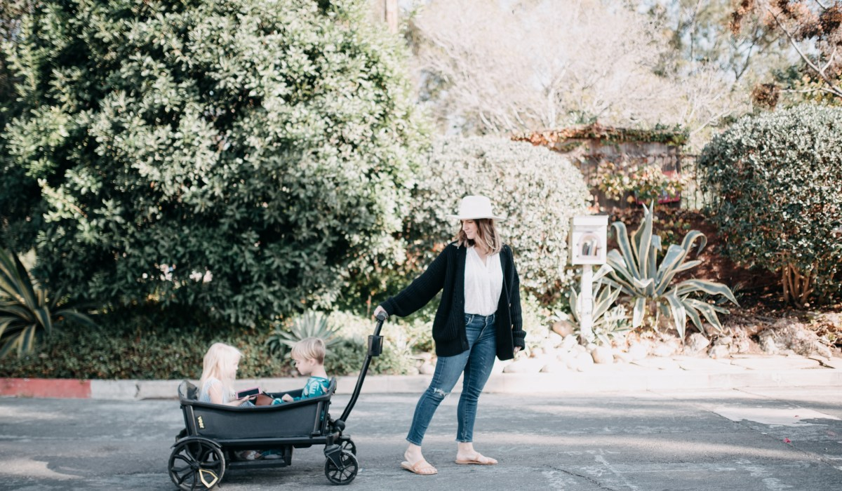 VEER GEAR WAGON REVIEW | THOUGHTSBYBRANDI.COM