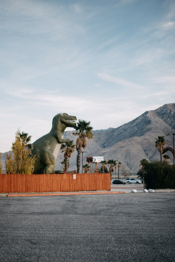 Palm Springs | A day trip with kids | thoughtsbybrandi.com _-12