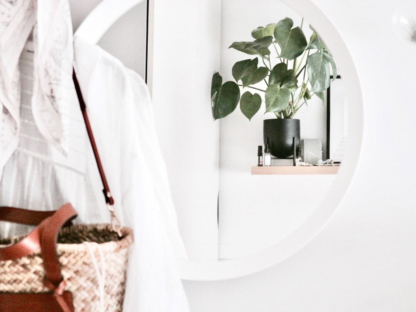 An Ode To My Plants | Inspiration: Plants