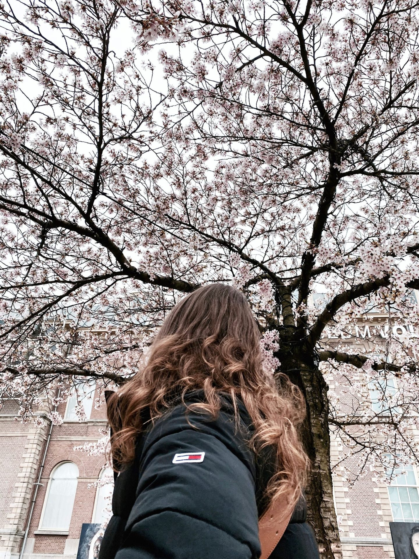 Pink Season Has Come And Gone | Inspiration: Cherry Blossom Season