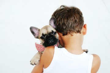 Adopting Your First Family Dog? Here's What You Need To Know