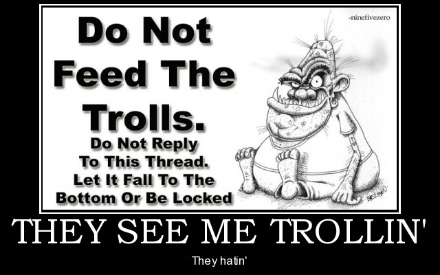 How to deal with trolls on social media