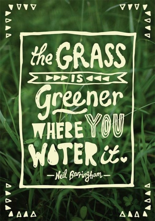 The Grass is NOT Always Greener.