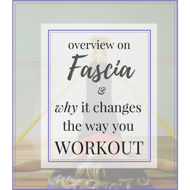 Overview on Fascia and Why it Changes the Way You Workout