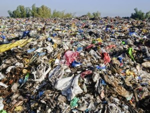 Textiles need to Become More Green