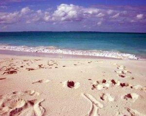 Beaches of Abacos Bahamas
