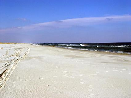Island Beach State Park at the Jersey Shore