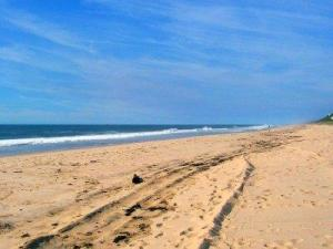 Main Beach in East Hampton, New York
