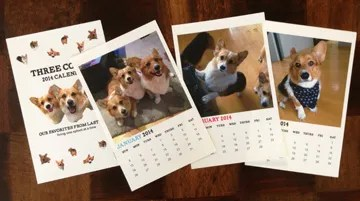 2014 Corgi Calendar