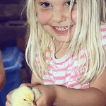 Bobcaygeon Farm - Baby Chicks