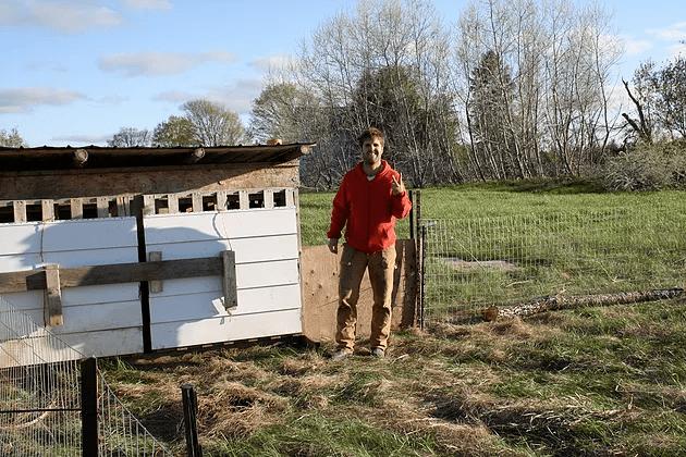CSA-Farm-Bobcaygeon-Pork