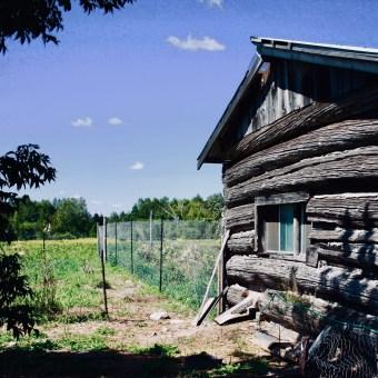 Three Forks Farm - Bobcaygeon - FAQ and Policies