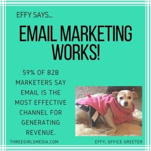 Effy Says…Email Marketing Works!