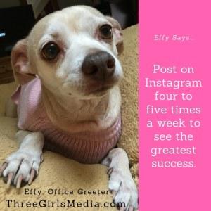 Effy Says…See Instagram Success!