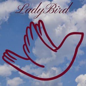 The Powerful Marketing Strategies of 'Lady Bird' that Charm Millennials