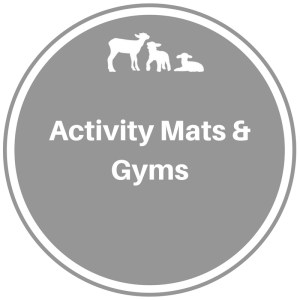 Activity Mats and Gyms