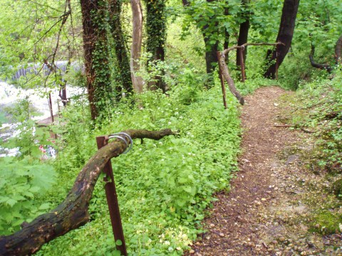 The secret, precarious path. The rails were branches. The stairs are uneven, with wood and stone and rebar.