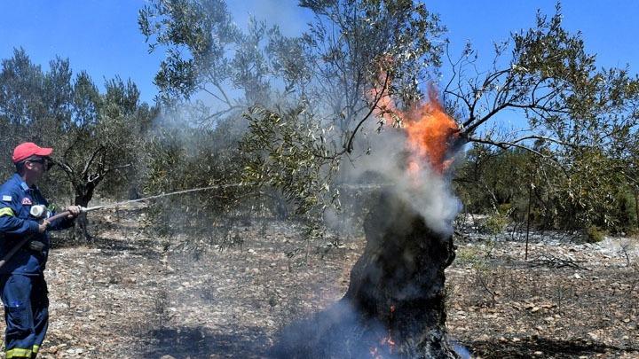 Κόρινθος: Νέο μέτωπο φωτιάς στο Λουτράκι