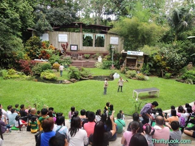 amphitheatre, malagos garden resort, davao, park, bird show, interactive bird show