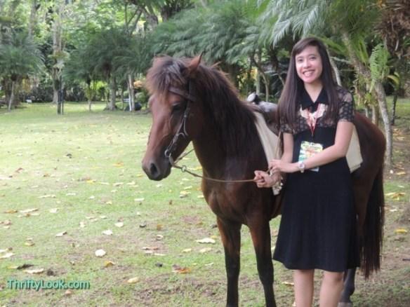 malagos garden resort, davao, park, horse, animal, outdoor