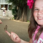 Wings of Paradise: Family #travel and a Butterfly Rescuer