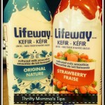 Lifeway Kefir Low Fat Cultured Milk Smoothie Drink
