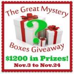 Super Fun Mystery Boxes #Giveaway