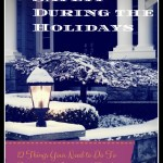 Twelve Home Safety Tips for the Holiday Season