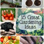 15 Great Gardening Ideas
