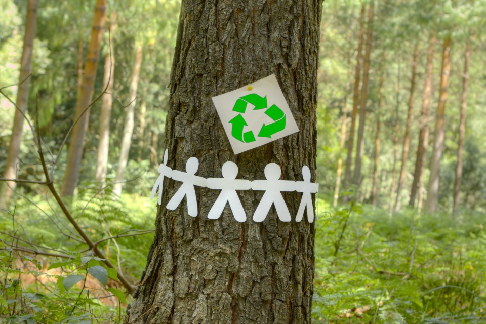 Green recycle sign with paper men holding hands on a tree.
